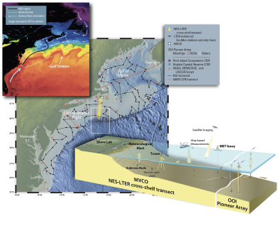 The NES-LTER cross-shelf transects southward from Martha's Vineyard